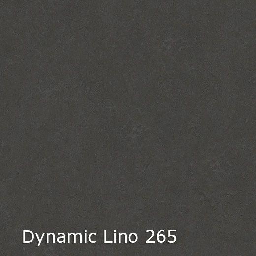 Dynamic Lino 400 breed-4
