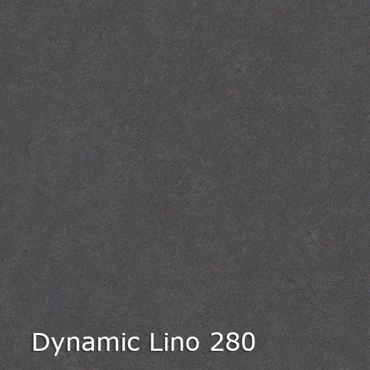 Dynamic Lino 400 breed-6