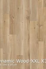 Interfloor Interfloor Dynamic Wood XXL 400 breed