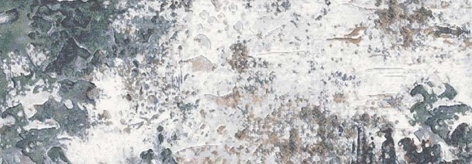 Karpet Anthony