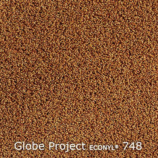 Globe Project-5