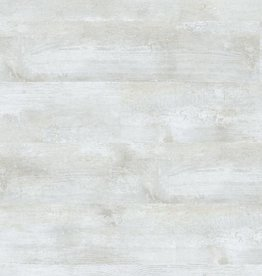 Expona Natural Frosted Oak 5822