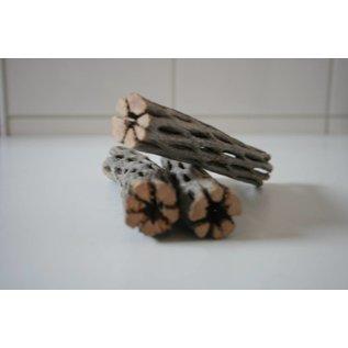 Onlineaquarium spullen Cholla wood