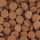 Eigen merk Knoflook tabletten