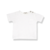 1+ IN THE FAMILY 1+ in the Family t-shirt Domenico Off White