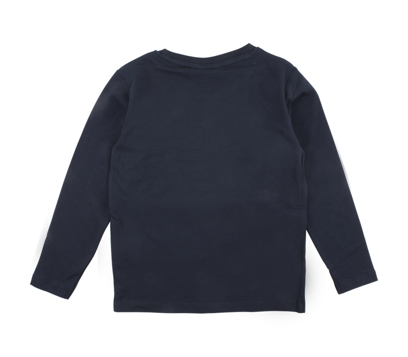 Basic longsleeve van Nordic label Blue
