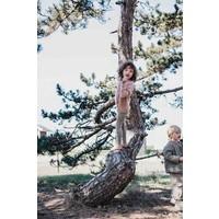 Mingo Legging Grass Print Oak