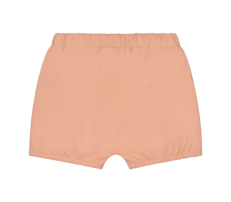 Gray Label Puffy Shorts Rustic Clay
