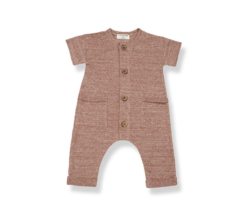 1+ in the Family Enzo Jumpsuit robins