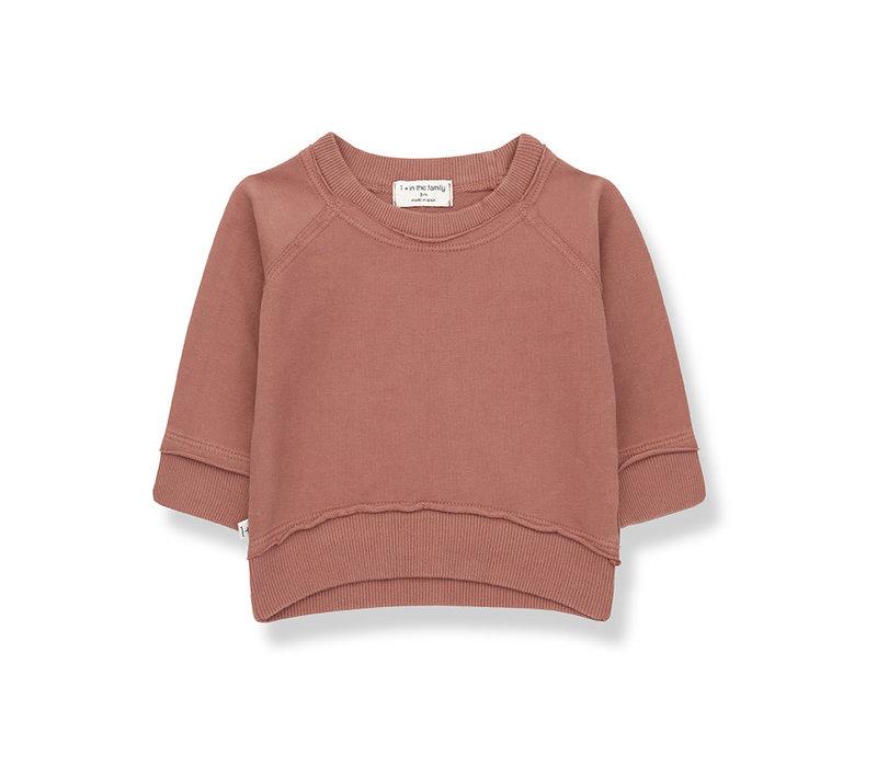 1+ in the Family Tristan sweatshirt roibos