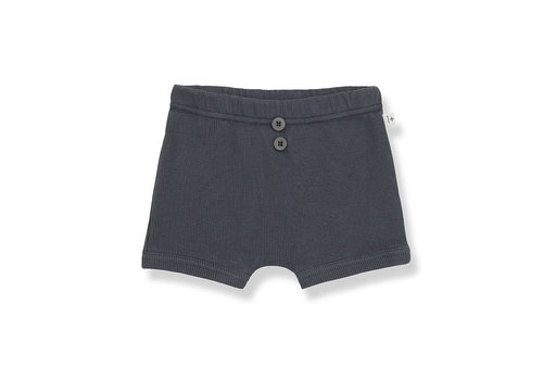 1+ IN THE FAMILY 1+ in the Family Sebastian culotte anthracite