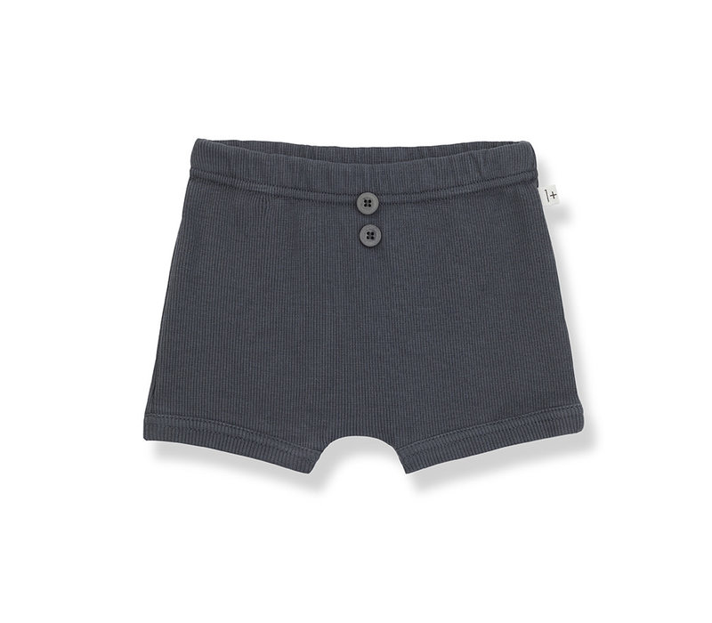 1+ in the Family Sebastian culotte anthracite