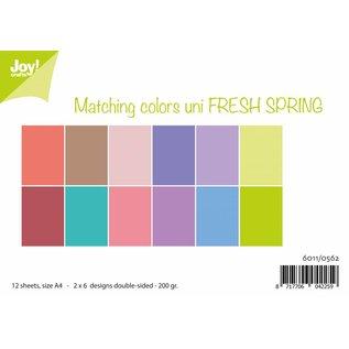 Joy!Crafts Papierset Matching Colors uni - Fresh Spring