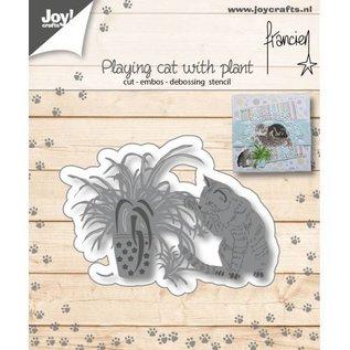 Franciens spelende kat met plant
