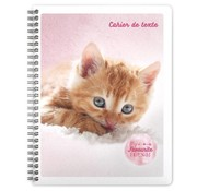 My Favourite friends Notitieboek A5 lijn kat