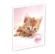 My Favourite friends A4 lijntjes schrift kat