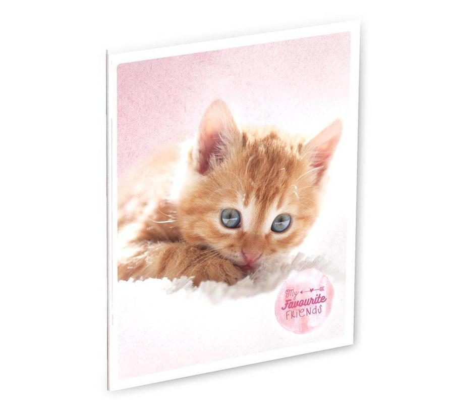 A4 schrift gelinieerd  kat
