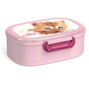My Favourite friends Lunchbox kat
