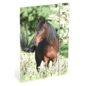 Amazone Elastomap A4  paard