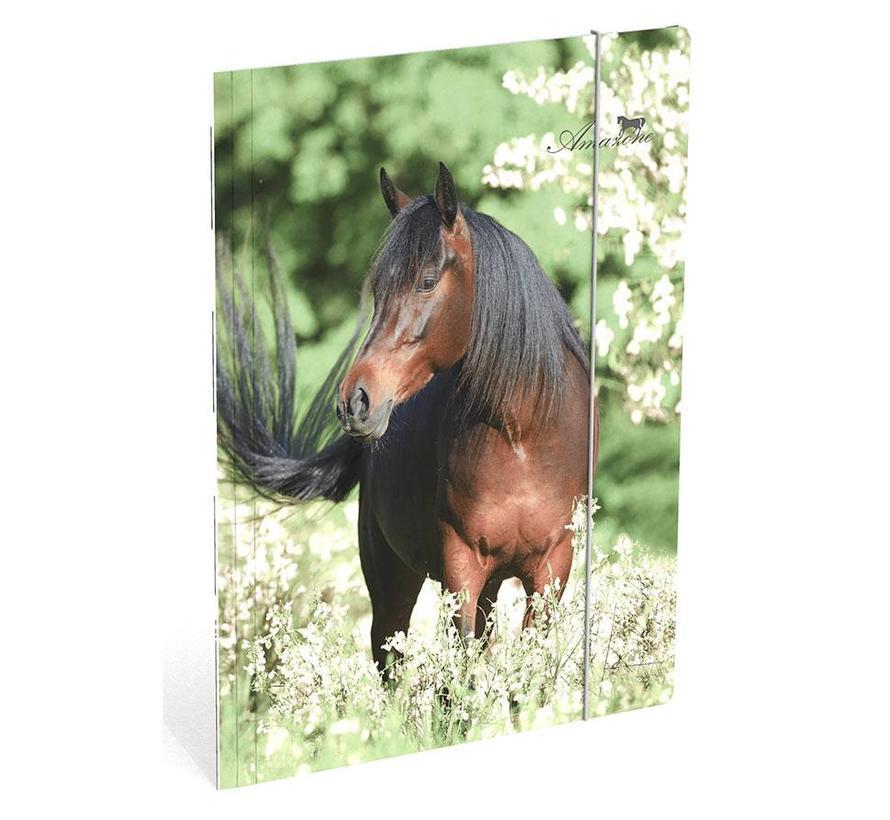 Paarden elastomap A4