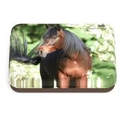 Amazone Bewaarblikje paard