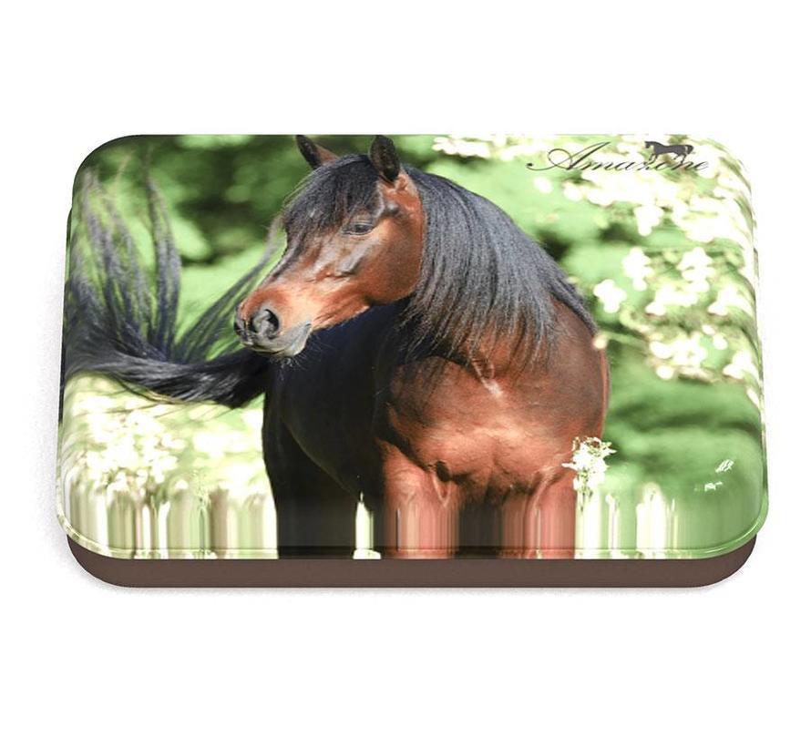 Paarden bewaarblik