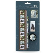 Amazone Schrijfset paarden - 4-delig