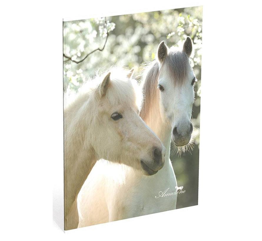 A4 schrift geruit paarden