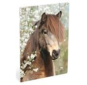 Amazone Elastomap A4  paard r