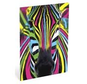 Wild Elastomap A4  - zebra