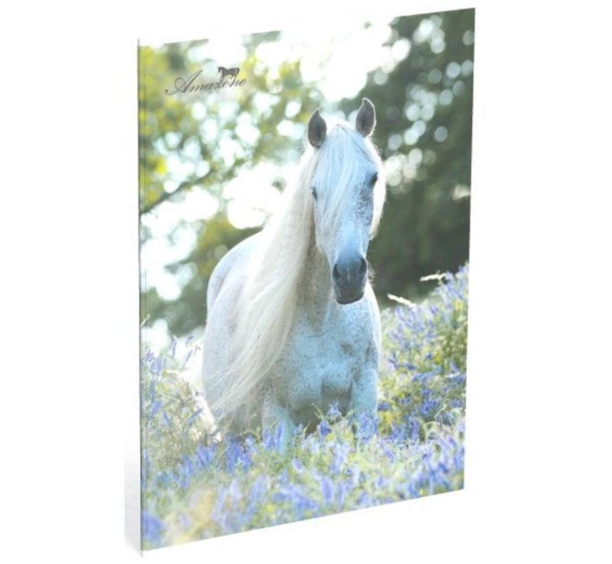 A4 schrift gelinieerd  paard