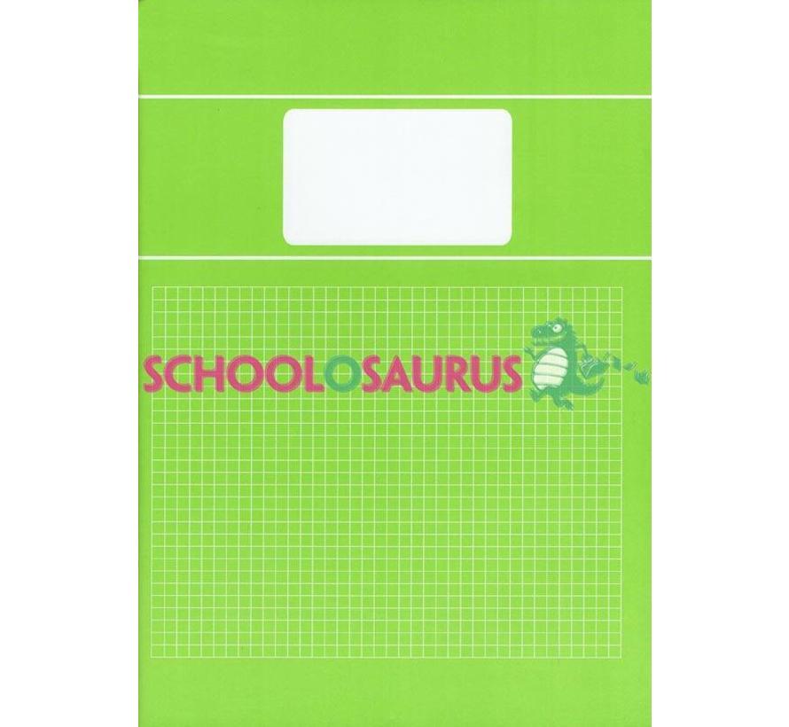 Groen 5mm ruitjes schrift A4