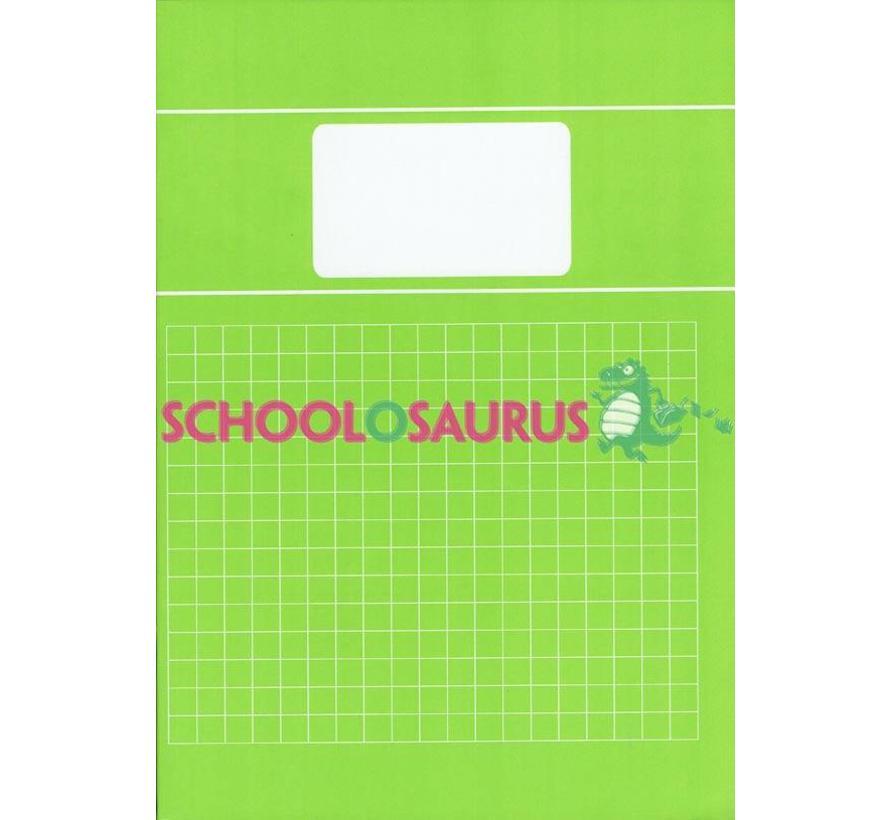 Groen 10mm ruitjes schrift A4