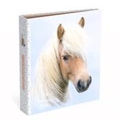 My Favourite friends Ordner smal 2 rings - paard