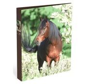 Amazone Ringband 2r paard - bruin