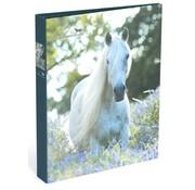Amazone Ringband 2r paard - wit