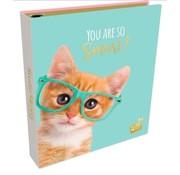 Studio Pets Ringband 2r  - kat bril