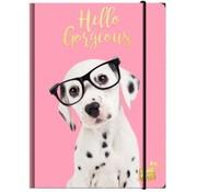 Studio Pets Elastomap A4 - hond roze