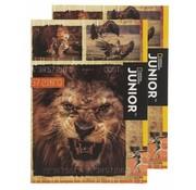 National Geographic Junior A4 lijntjes schrift 2 stuks