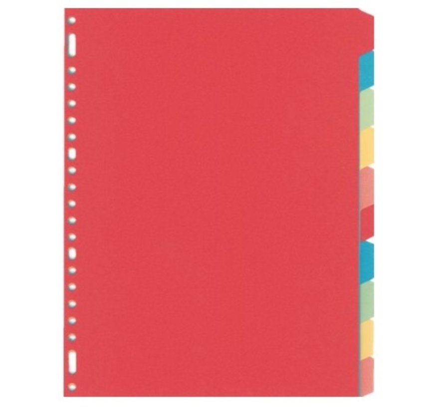 Tabbladen gekleurd karton - 10 delig