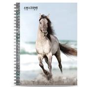 Amazone Notitieboek A5 lijn