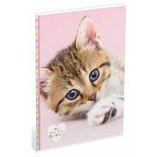 My Favourite friends A4 lijntjes schrift - kat