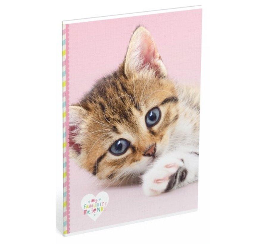 A4 schrift gelinieerd  - kat
