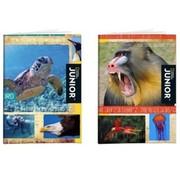 National Geographic Junior A5 lijntjes schrift 3 stuks