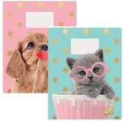 Studio Pets A5 schriften - kat stippen