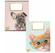 Studio Pets A5 schriften - kat