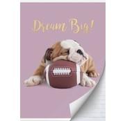 Studio Pets A4 lijntjes schrift Hond football