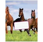 Kangaro Schoonschrijven 6-3-6 oefenschrift A5 paard