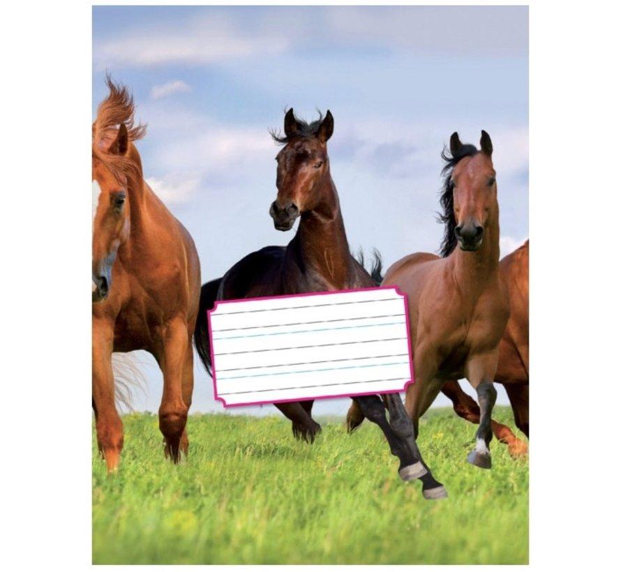 Schoonschrijven 6-3-6 schrift A5 paard