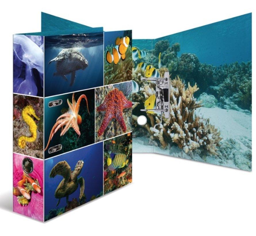 Ordner - zeedieren